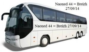 Cars pour Nantes